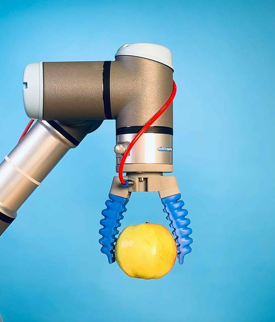 Universal cobot gripping fruit with two jaw gripper