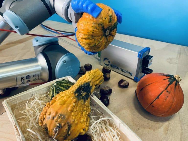 Robot universel triant les légumes par serrage doux